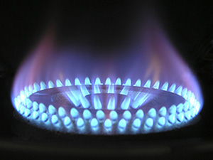 Annual gas safety certificates just £40 plus VAT