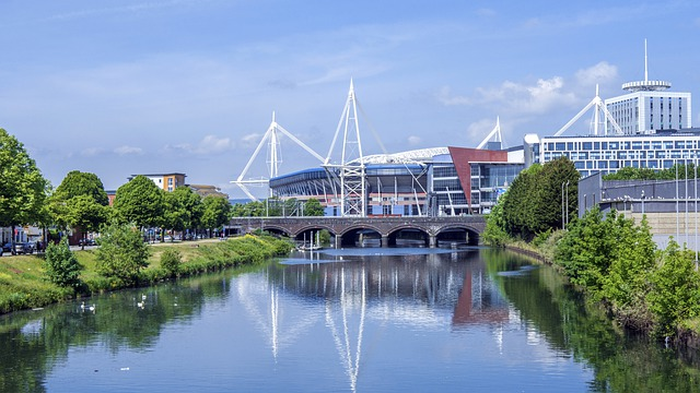 Best areas to live in Cardiff for a professional